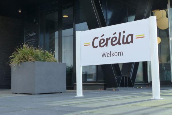 Cérélia Signing door Korteland